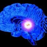 Ясновидение и шишковидная железа