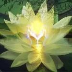 Упражнение души «Творить гармонию»