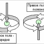 Теория торсионных полей и человек