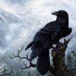Проклятие чёрных воронов