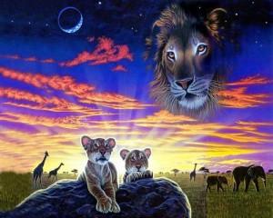 Сны о животных