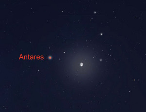 Звезда Антарес